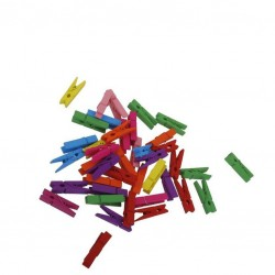 MULTICOLOR Wooden Pegs 25mm, 100pcs - Cocktail Garnish